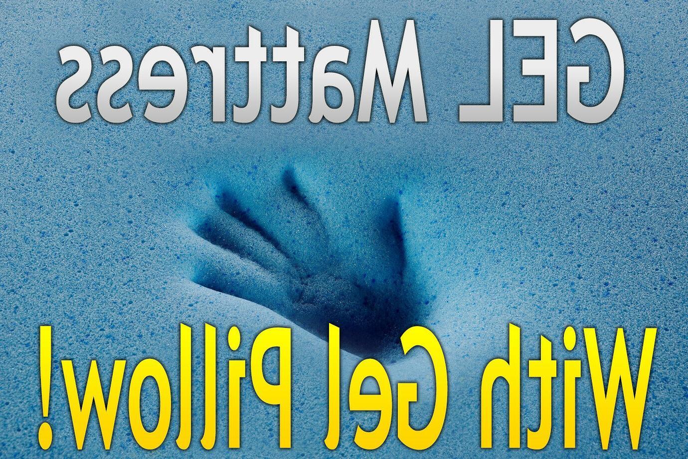 "DYNASTY 14.5"" Memory Foam -CAL"